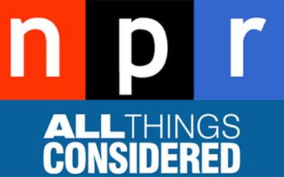 Learning from the Virtual You, NPR All Things Considered