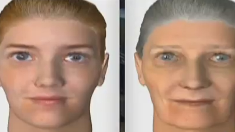VR Ageing